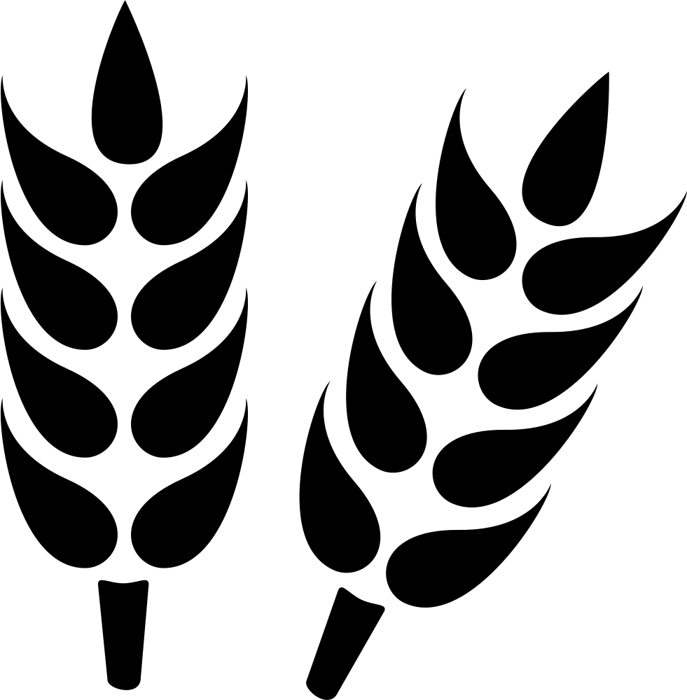 Icon of wheat