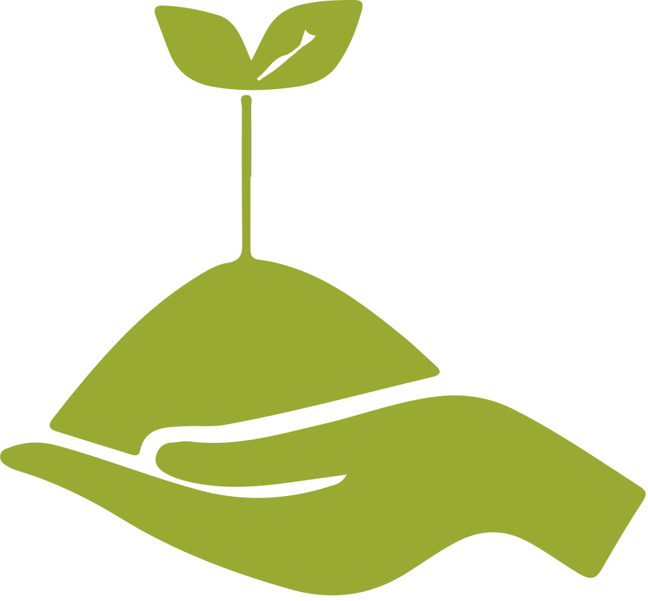 Seed growing icon