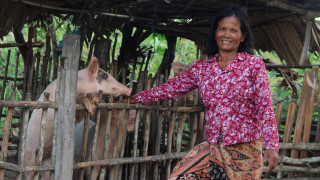 A Cambodian woman standing with her pig