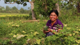 A Cambodian farmer with her fruit